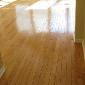 make your hardwood floors shine modern carpetone